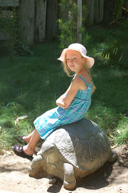 On my turtle at the zoo